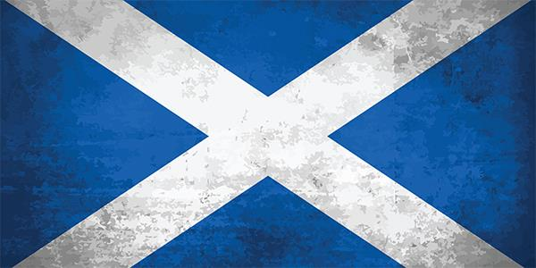 The saltire that has become known as the 'St. Andrew's Cross'