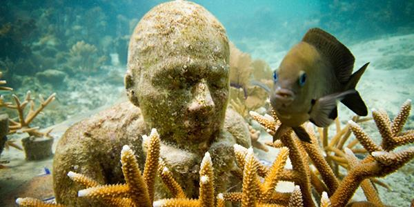 Jason deCaires Taylor's incredible underwater world