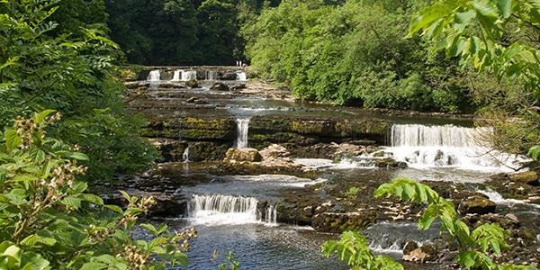 The Aysgarth Falls