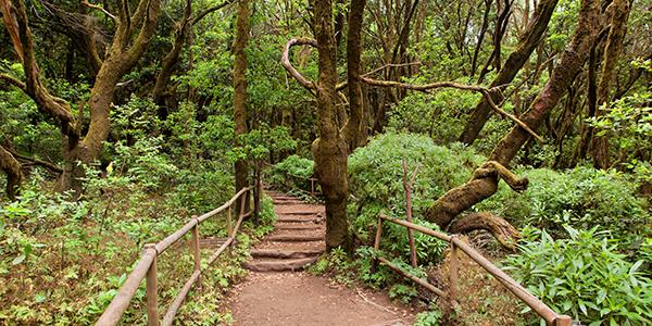La Gomera's Top Attractions