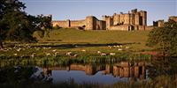 Alnwick Castle: Days out in Northumberland