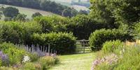 Wildlife garden with the countryside of Shropshire beyond