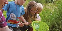Go Wild in Dorset | How to get kids exploring the great outdoors