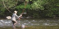 Salmon fishing in the late summer and early autumn