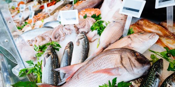 Try Dorset's fantastic seafood