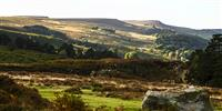 What to do in Nidderdale AONB