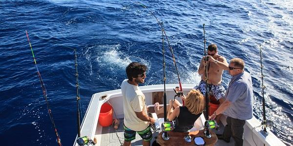 From mackerel to marlin: angling in the Algarve