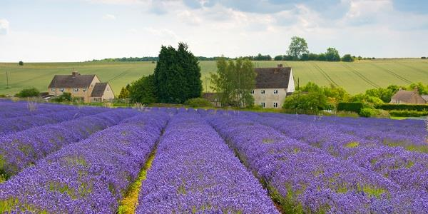 6 couples adventures to fall in love with in the Cotswolds