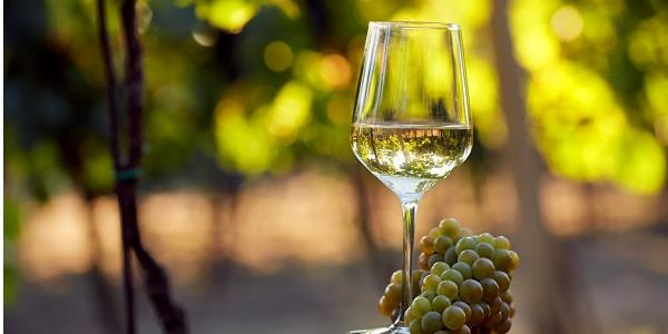 3 vineyards worth toasting in the Algarve