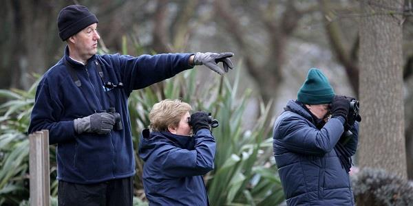 The Big Garden Birdwatch at Langton House
