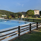 Swimming pool in Tuscany