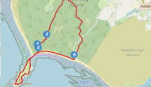 Walk 7 - Newborough Forest & Llandwyn Bay